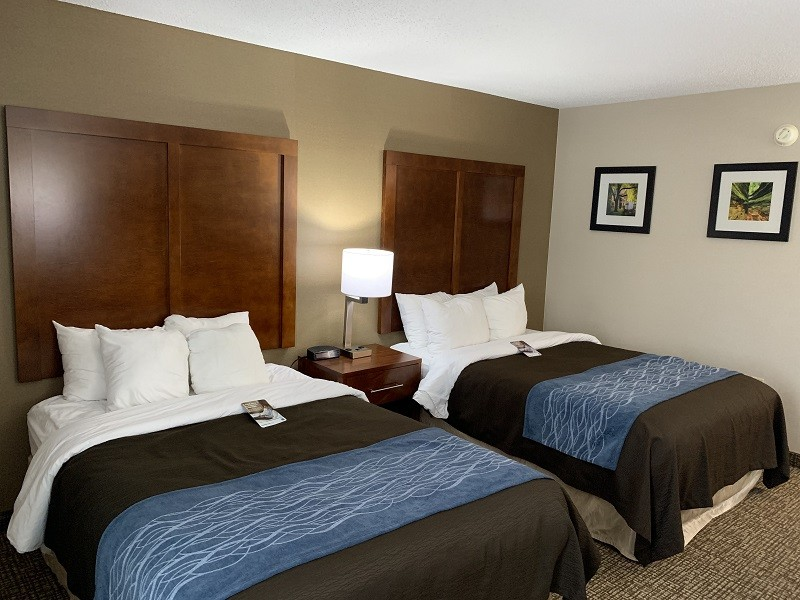 https://comfortinnanderson.com/wp-content/uploads/2019/09/standard-double-double-room-comfort-inn-anderson-indiana1.jpg.jpg